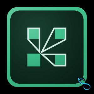 Adobe connect-تماس صوتی و تصویری