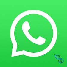 WhatsApp-تماس صوتی و تصویری